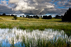 Tourbe (maximfr) Tags: sky france reflection nature water clouds landscape pond eau lac reflet ciel nuages paysage ef2470mmf28lusm aveyron aubrac midipyrnes rouergue canoneos50d saintchlydaubrac