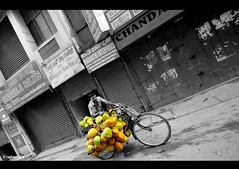 Street coconut vendor (raghavvidya) Tags: road street india project photography nikon angle coconut bangalore wide sigma vendor 365 1020mm avenue 2011 d300s raghavvidya