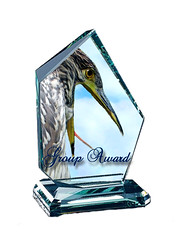 Group Award 2