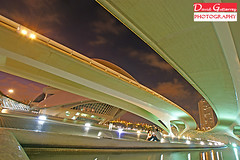 City Of Arts And Sciences - World of Calatrava (david gutierrez [ www.davidgutierrez.co.uk ]) Tags: city bridge people urban art valencia architecture modern night design spain couple engineering calatrava future santiagocalatrava cityofartsandsciences