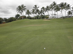 WAIKELE COUNTRY CLUB 120