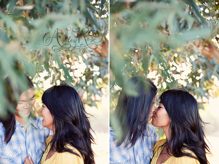 kissinginatree