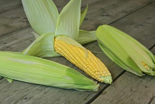 de maïs in 3 stappen