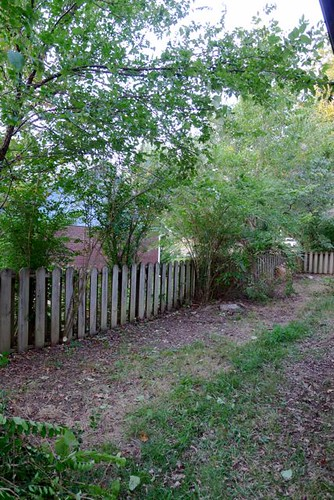 Cleared Fence
