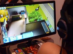 Gamescom Pets 2