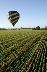 California Ballooning