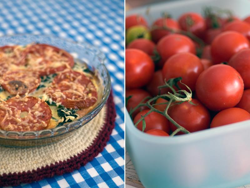 Gratinado de tomate e espinafres // Spinach Tomato Gratin