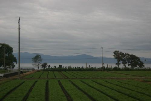Biwako and rice fields at 6:30 am