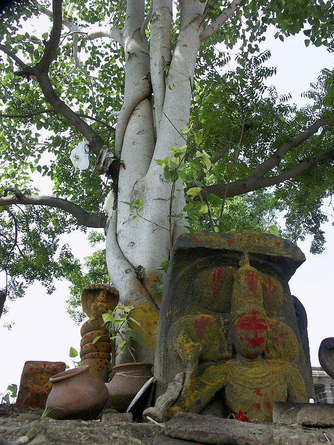 Почитание Нагов, Храм Вайкунта Перумал, Канчипурам, Тамил Наду © Kartzon Dream - авторские путешествия, авторские туры в Индию, тревел видео, фототуры