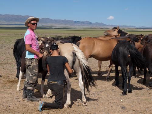 Desierto del Gobi 41