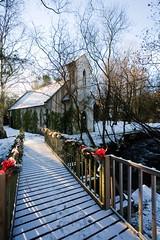 Brooklodge (C) Dec 2010