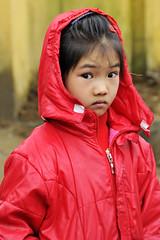 106_LAO84380017 (TC Yuen) Tags: vietnam sapa hmong terracefarming locai