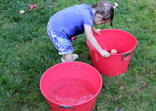 bobbing for apples?
