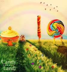 Candy Land (Hi I'm Adel) Tags: pink flowers blue red orange house ice cup colors grass birds yellow cake photoshop effects idea design rainbow colorful purple candy sweet cream land imagination lollipop topaz   candyhouse                cs5               blinkagain  adeldesigner