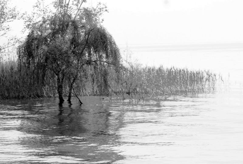 Lago di Garda, Charcoal Drawing Effect