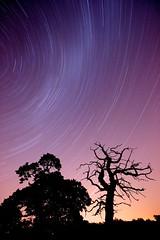 _DSC5452 - Version 2 (Simon Tregidgo) Tags: sky night time startrails photospecs 1635mmf28zassm
