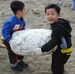 小個頭對大塊頭 海灘我們保護您(荒野保護協會林愛龍提供)