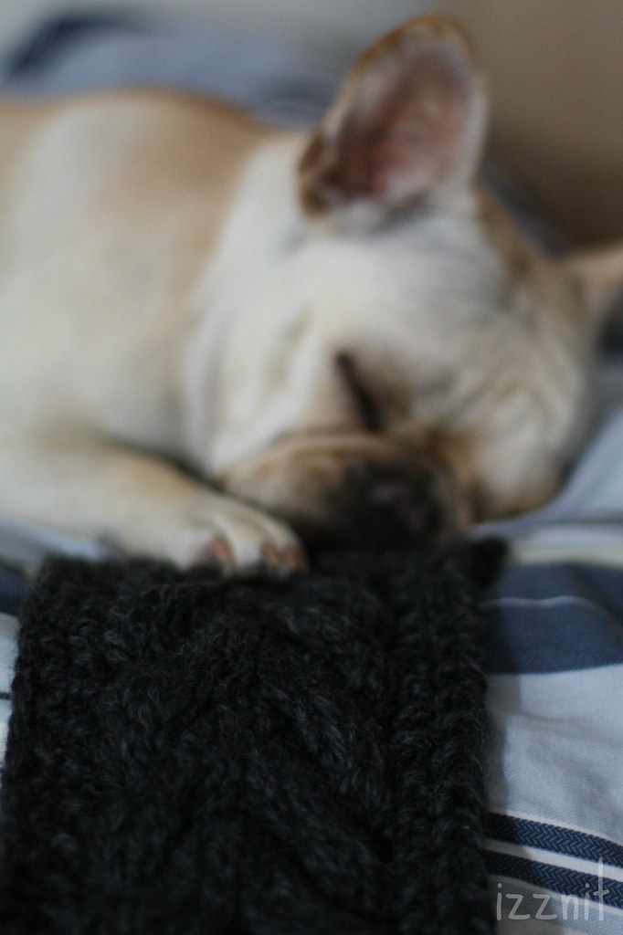 Tired From Helping Me Knit