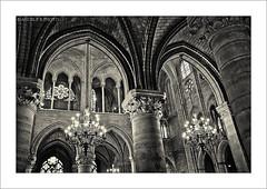 Notre Damme (@ngel Prez Rodrigo) Tags: paris france sony catedral iglesia bn francia pars virado interiorismo notredamme a700 eclesiastico