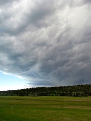 The Storms of the North Rim (El Stevo13) Tags: park trees arizona sky storm green pine clouds forest woods north meadow grand canyon national aspen rim quaking