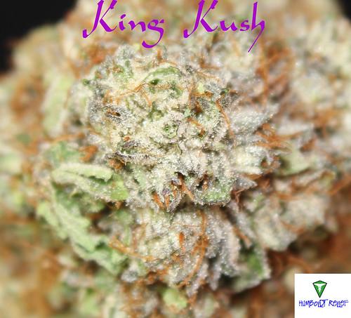 king kush k3
