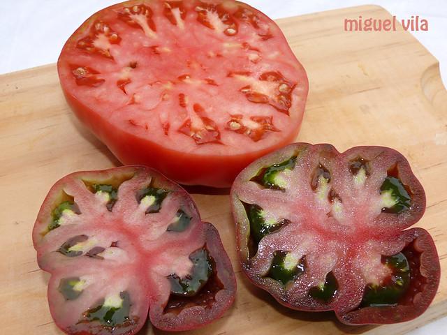 Tomates de variedades gallegas
