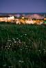i can see lights (Tafelzwerk) Tags: berlin green grass lights nikon bokeh 85mm depthoffield gras nikkor lichter eiche marzahn hellersdorf kaufpark nikkor85mm ahrensfelderberge d7000 ahrensfelderberg nikond7000 tafelzwerk tafelzwerkde kaufparkeiche