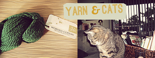 yarn and cats