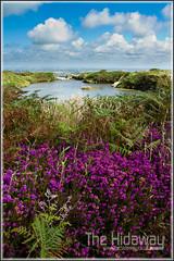 Carn Marth quarry - Explore #258 11/08/11 (Simon Bone Photography) Tags: cornwall purple heather hill landmark quarry cornish redruth carn waterfilled canon1740mmlf4 carnmarth wwwthehidawaycouk canoneos7d