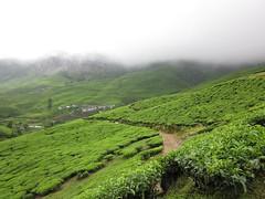n (waleed al-aibani) Tags: من تصويري رحلتي كيرلا للهند