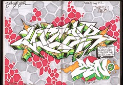 Up in Zens book (Extraskin-_-...dwk ban []ov[ ]) Tags: girl graffiti you go vice zen bible greenery graff drake piece blackbook kush 2011 vicer