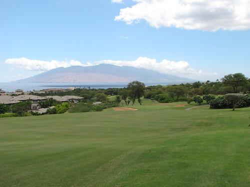 Maui Chiaki 908