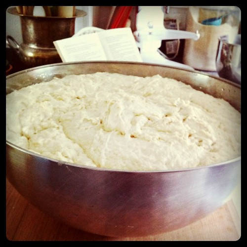 radical homemaking today: enough dough for eight loaves