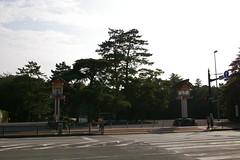IMGP2639