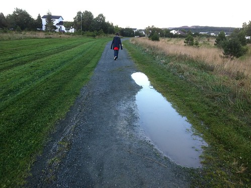 The puddles