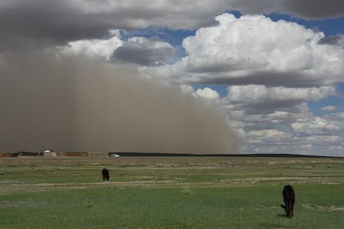 Desert sandstorm approaching