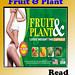FRUIT & PLANT1
