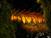 Sunken punga leaf (David Hollis2011) Tags: newzealand southisland westcoast canonpowershotsx110is
