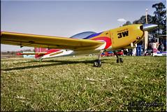 Aerobatic model - Modelo acrobático (Néstor Pugliese) Tags: argentina radio model control yerba buena tucumán