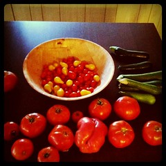 Today's harvest.