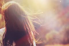 Day 230/365 ~ Someday Perhaps the Inner Light will Shine Forth from Us, and then We'll Need No Other Light (Amanda Mabel) Tags: light red portrait sun sunlight girl sunshine hair lens evening back hoodie day head miracle flames lightleak flare faceless 365 brunette dust 230 goldenhour fiery innerlight strands motes johannwolfgangvongoethe somedayperhapstheinnerlightwillshineforthfromusandthenwellneednootherlight amandamabel