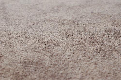 carpet-sneak-2