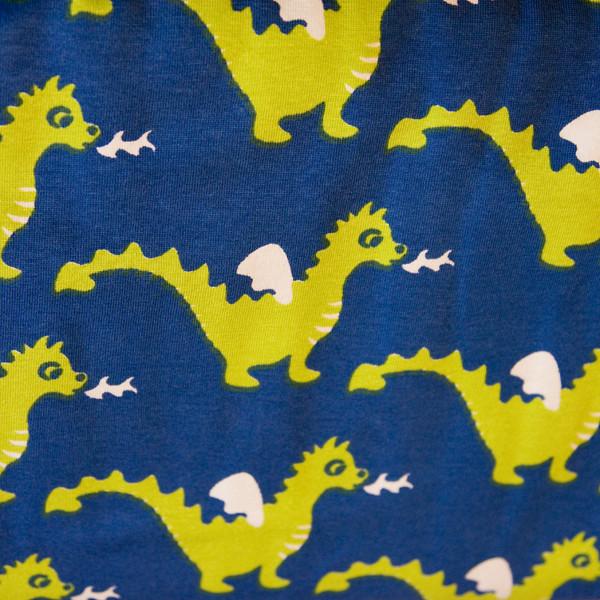 blue lime dragon jersey