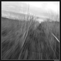 fuite (sebastien.emery - L-haut?) Tags: monochrome noiretblanc flou mouvement