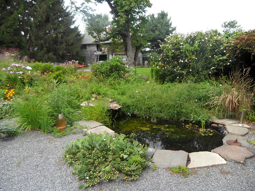 Farmhouse pond