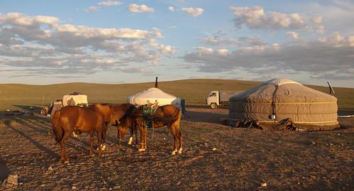 Desierto del Gobi 12