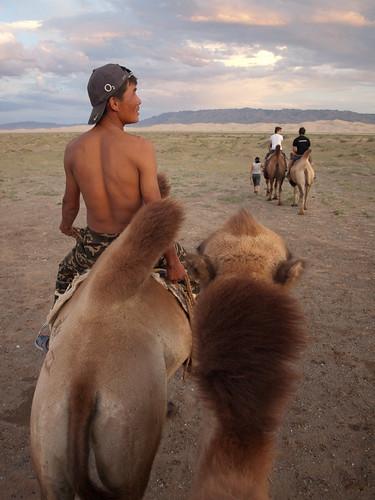 Desierto del Gobi 46