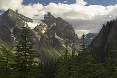 Mountains above Lake Louise (sylvanbobcat) Tags: travel canada mountains tree northamerica banff wilderness lakelouise banffnationalpark