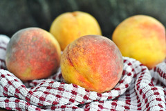 north fork peaches