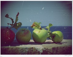 #210 Apples and sea... (Mem Foto) Tags: sea summer de flickr fuji diego august explore peter slovenia castro capodistria don apples piran mele francesco giuseppe istria bonifacio bossman 2011 pirano tartini mareadriatico hs10 distria mem7672